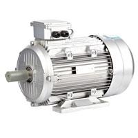 الکترو موتور تک فاز سفید پارس درایو